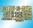 2016_0619第20回 鹿児島県ビーチバレー男女選手権大会
